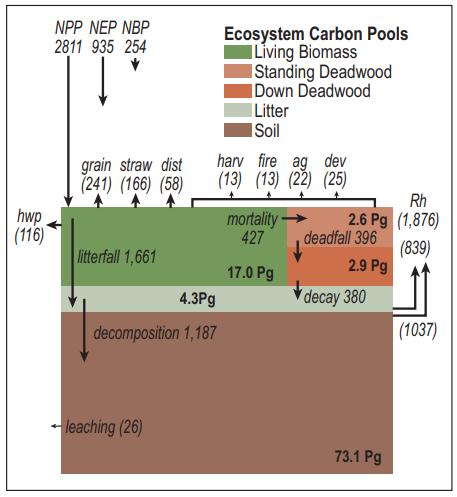 USGS Land Carbon Figure 6